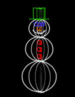 categories - Animated Christmas Light Displays